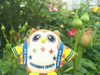 20180414_Hanamakionsen_RoseGarden5.jpg