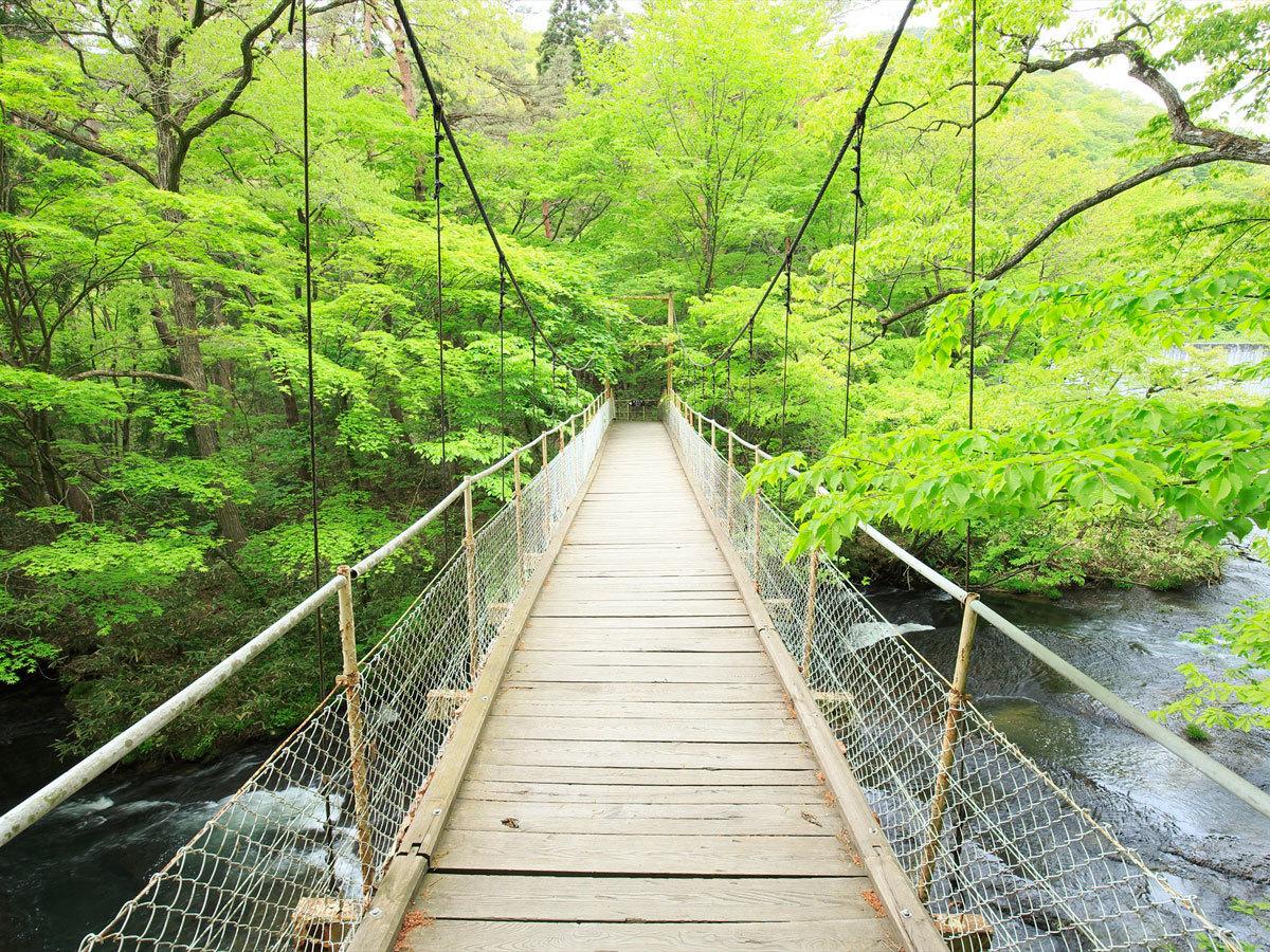 吊り橋を渡って釜淵の滝へ.jpg