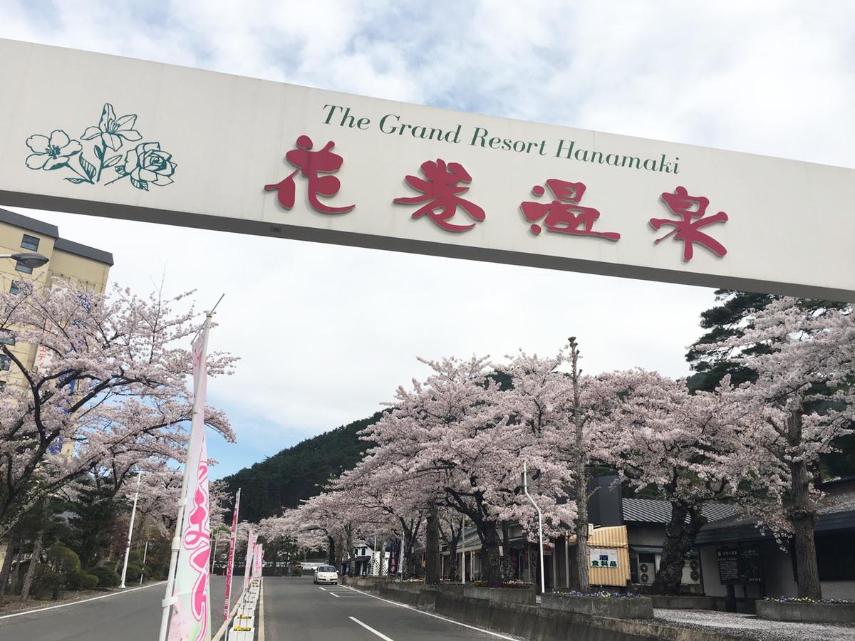 20170501_入口ゲート付近の桜並木.jpg