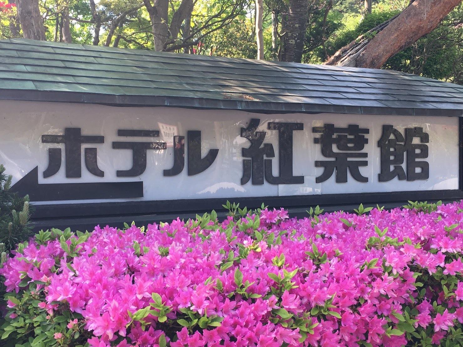20170520_ホテル紅葉館前のツツジ.jpg