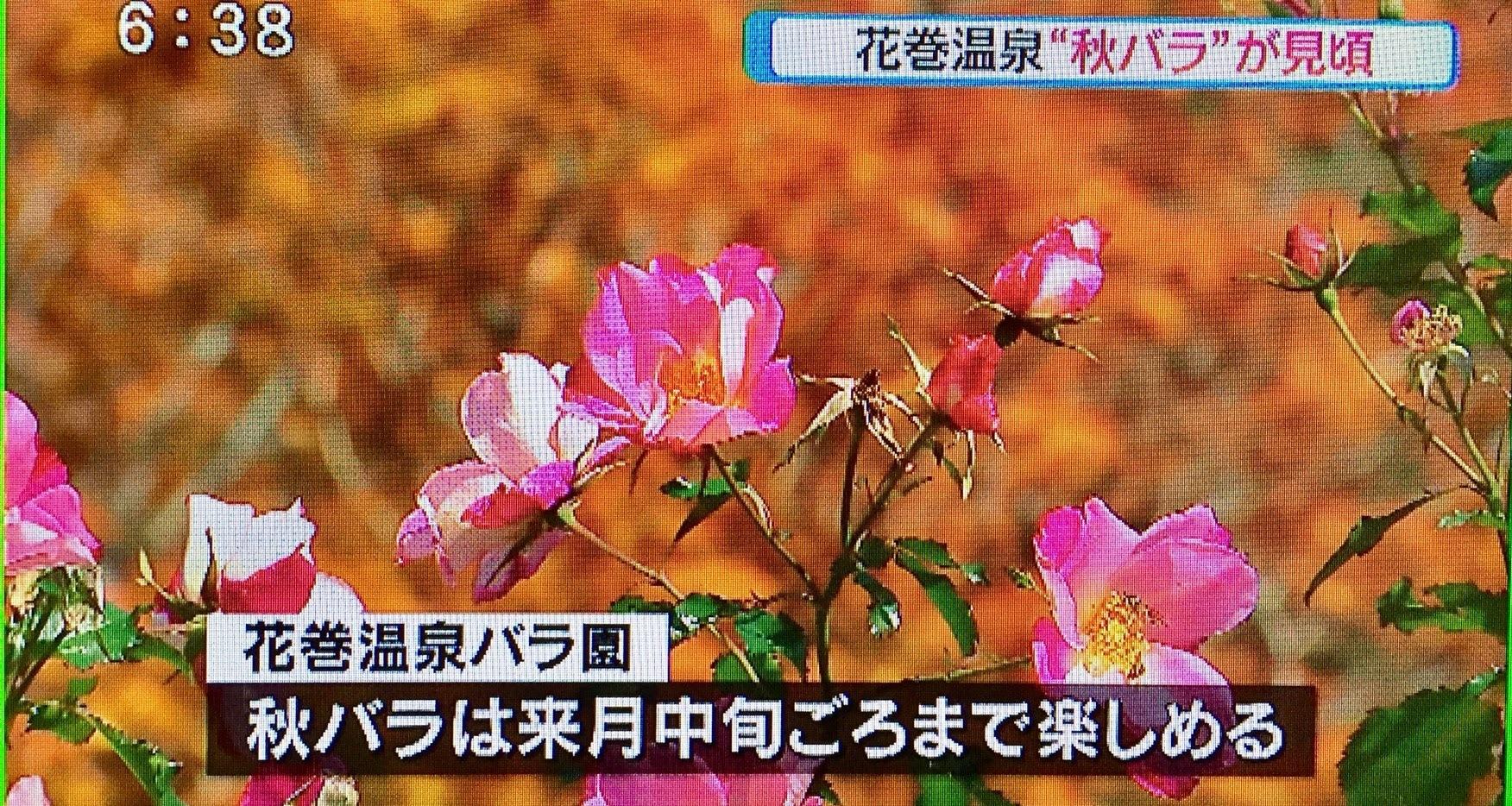 20171025_ニュースプラス1いわて�I.jpg