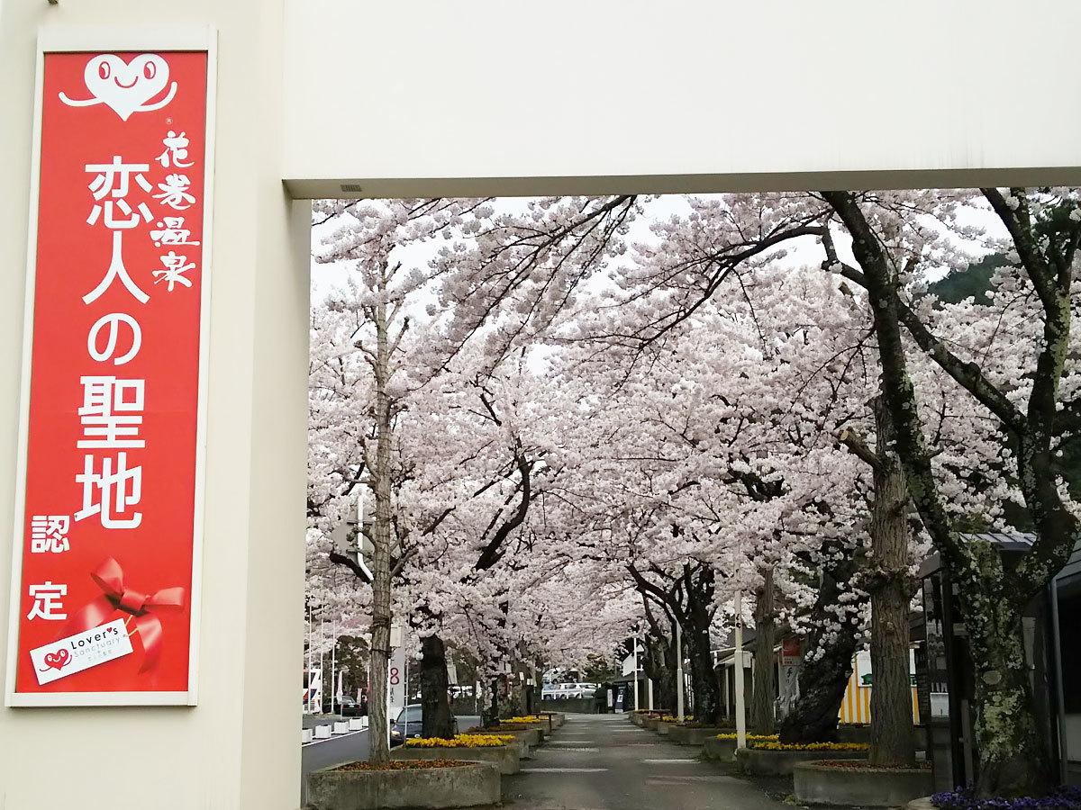 20160422_桜1.jpg