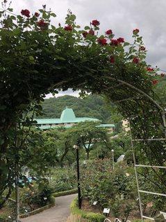 20180531_Hanamakionsen Rose Garden11.jpg