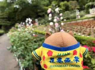 20180531_Hanamakionsen Rose Garden2.jpg