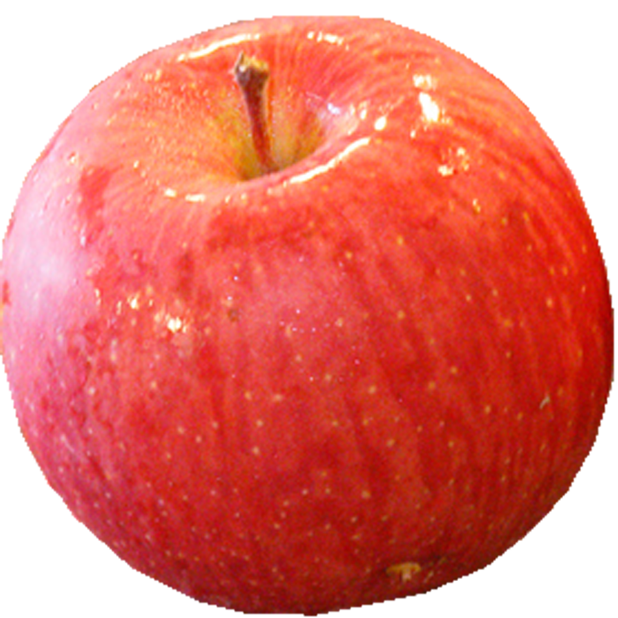 りんご.png
