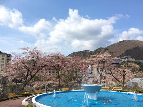 20160420_桜1.jpg