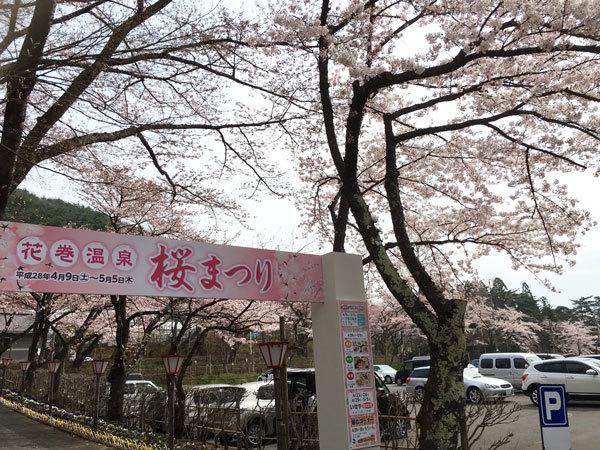 20160421_桜3.jpg